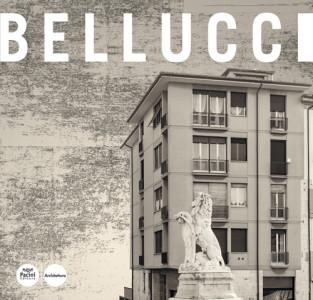 Renzo Bellucci - Opere e progetti