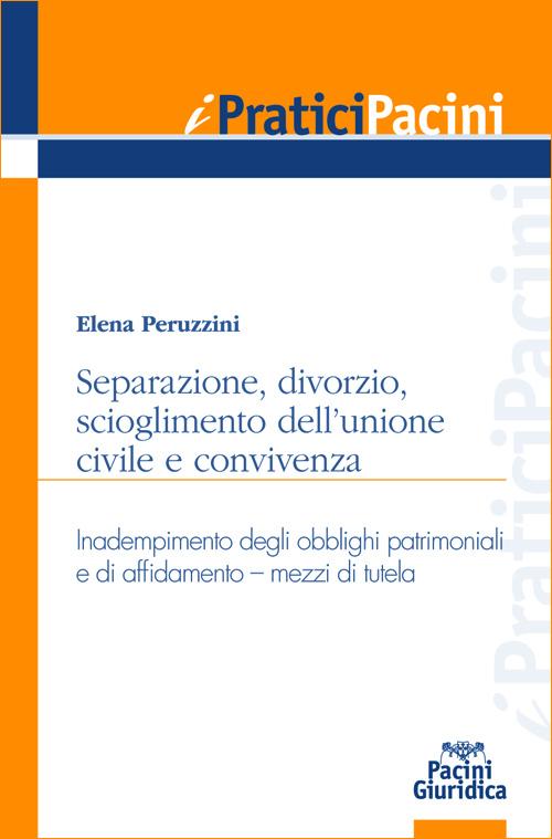 Separazione, divorzio, scioglimento dell'unione civile e convivenza - Inadempimento degli obblighi patrimoniali e di affidamento - Mezzi di tutela