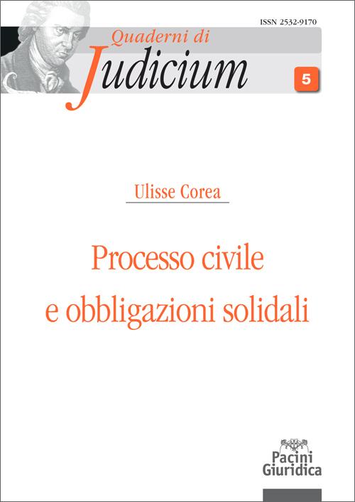 Processo civile e obbligazioni solidali